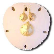 Real Gold Plated Sand Dollars... are lavishly electroplated with genuine 24K gold. Available as gold plated sand dollar earrings: dangle style on hypoallergenic french wires, or as studs on clip-on earring backs. In Stock and Ships Immediately! shipping weight 2 ozs. $5.95. or sold separately as a charm to wear as a pendant to be worn on a gold chain around the neck. ...In Stock shipping weight 2 ozs. $3.50. These superbly crafted gifts from the sea will enchant you. A.K.A. The Holly Ghost Shell is one of natures most unsual specimens of marine life. Order NOW!