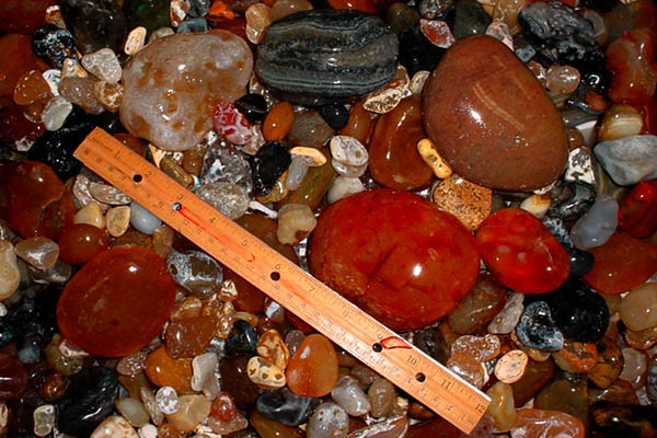 3 inch deep tray showing a sample load of agates of the Oregon coast unloaded from a 40 pound tumbler - click here for close up view of this load from the R40C Lortone Rock Tumbler, From Wesley's Trading Post